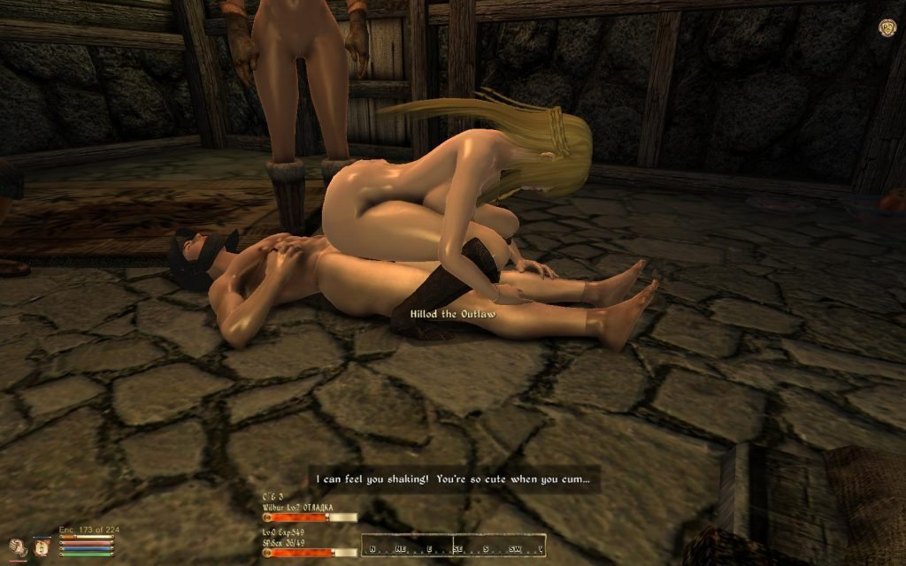 skyrim sex game